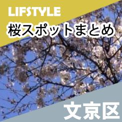 桜スポットまとめ